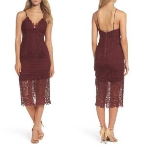 NEW BARDOT Versailles BURGUNDY Lace Pencil DRESS S